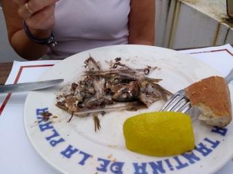 Sardine carnage!!